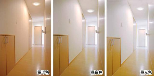 照明の色による効果の違い