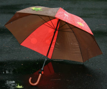 「雨漏り対策!屋根防水」について  パート①