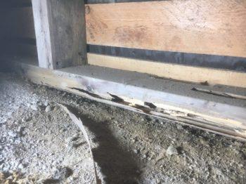 シロアリ被害 床下 ねだ おおびき 断熱材
